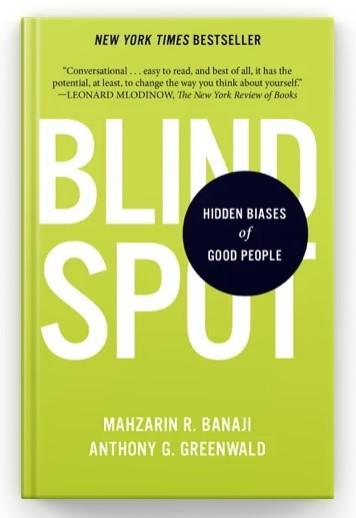 Blindspot Book Cover
