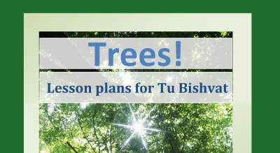 Trees! lesson plan preview