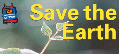 Save the Earth written over plant